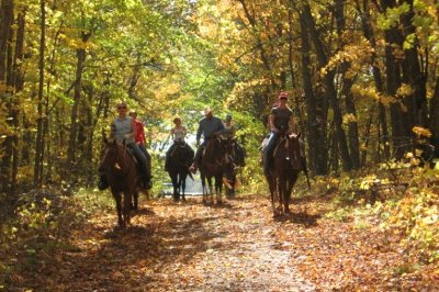 Horseback riding on park trail